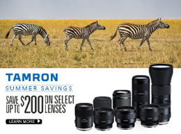 Special offers on 3 Legged Thing tripods and brackets at Arlington Camera