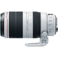 Canon EF 100-400mm f/4.5–5.6L IS II USM Lens