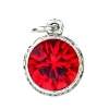 Beaucoup Designs Aimez Charm Silver Garnet (January)