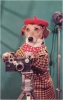 Found Images Press Dog Photographer Print